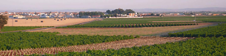 parra-jimenez-winery