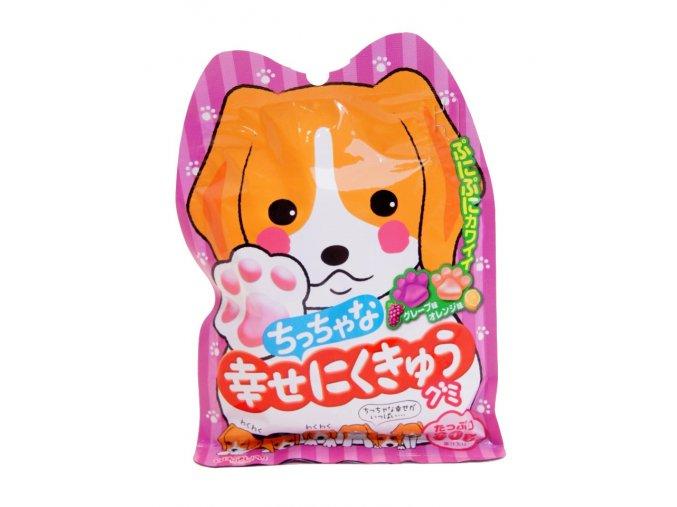 Senjaku Chicchana Shiawase ni Kukyu Grape Orange Gummy 80g