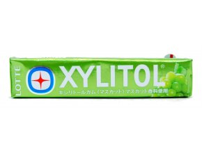 Lotte Xylitol Muscat