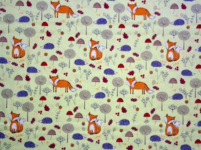 Plátno lišky v trávě