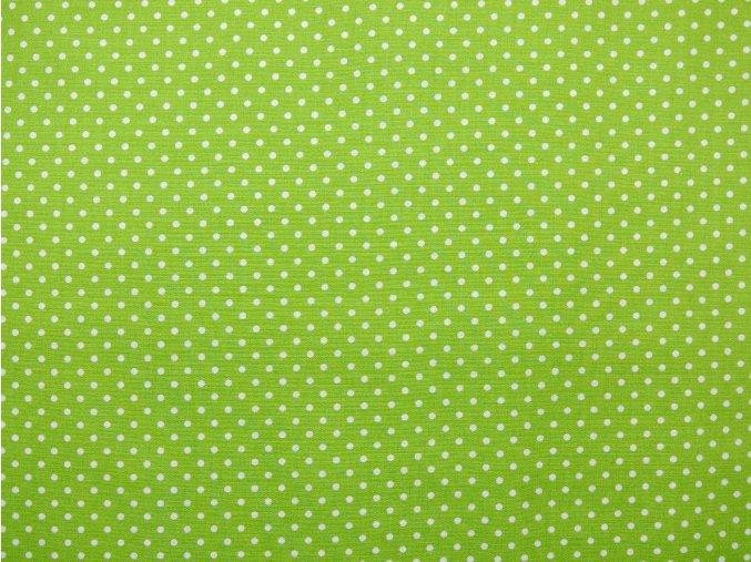 Plátno bílý puntík na zelené