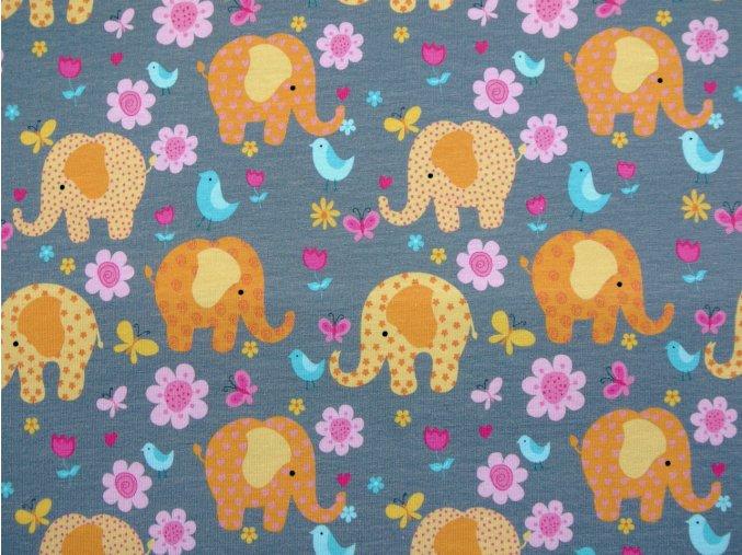 Elastický úplet sloni na šedé