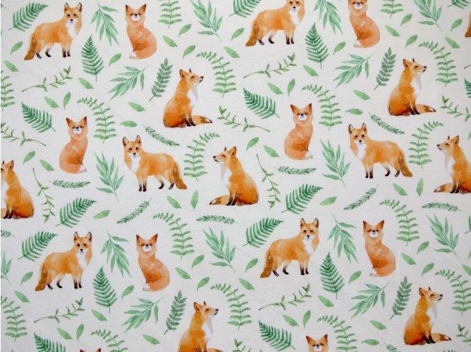Elastická teplákovina lišky na krémové  (digitisk)