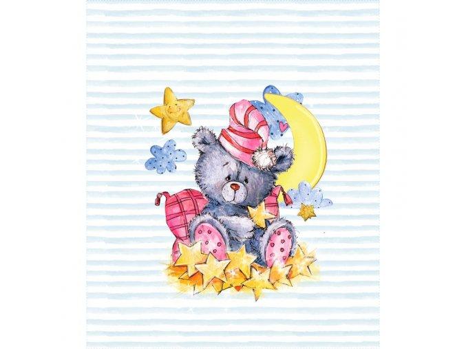 medvidek s hvezdami