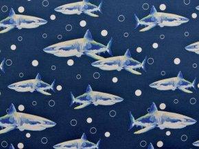 Elastický úplet žraloci na modré (digitisk)