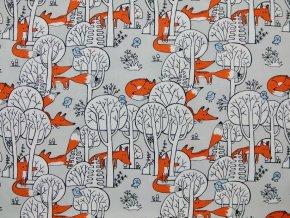 Plátno lišky na šedé  (digitisk)