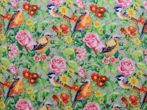 Softshell zimní - ptáci mezi květy