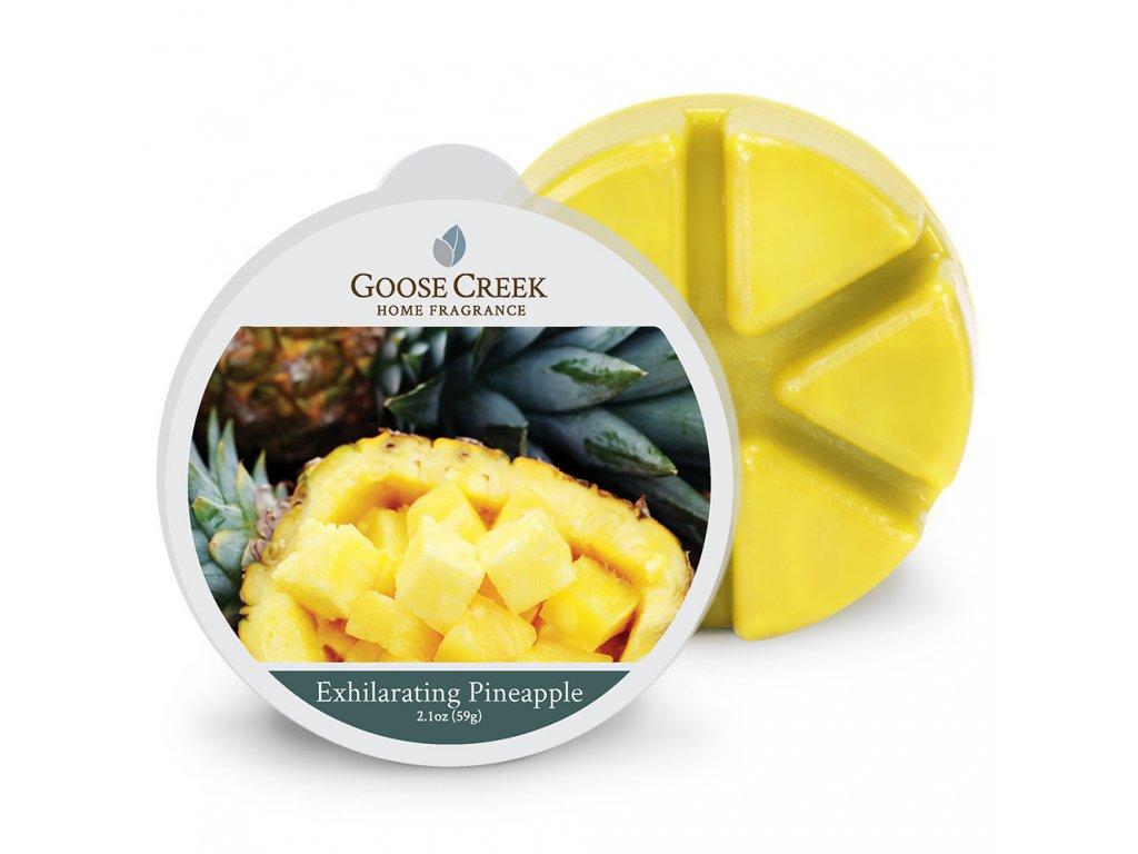 Goose Creek Candle Vonný Vosk Vzrušující ananas - Exhilarating Pineapple, 59 g