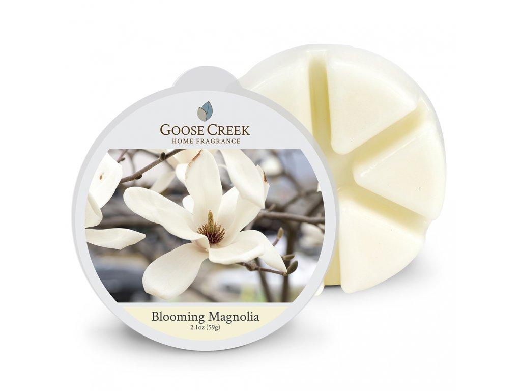 Goose Creek Candle Vonný Vosk Kvetoucí Magnolie - Blooming Magnolia, 59 g
