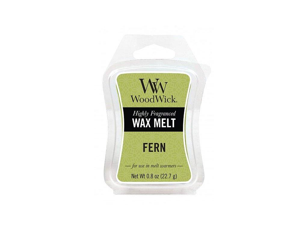 WoodWick Vonný vosk do aromalampy Fern, 22.7 g