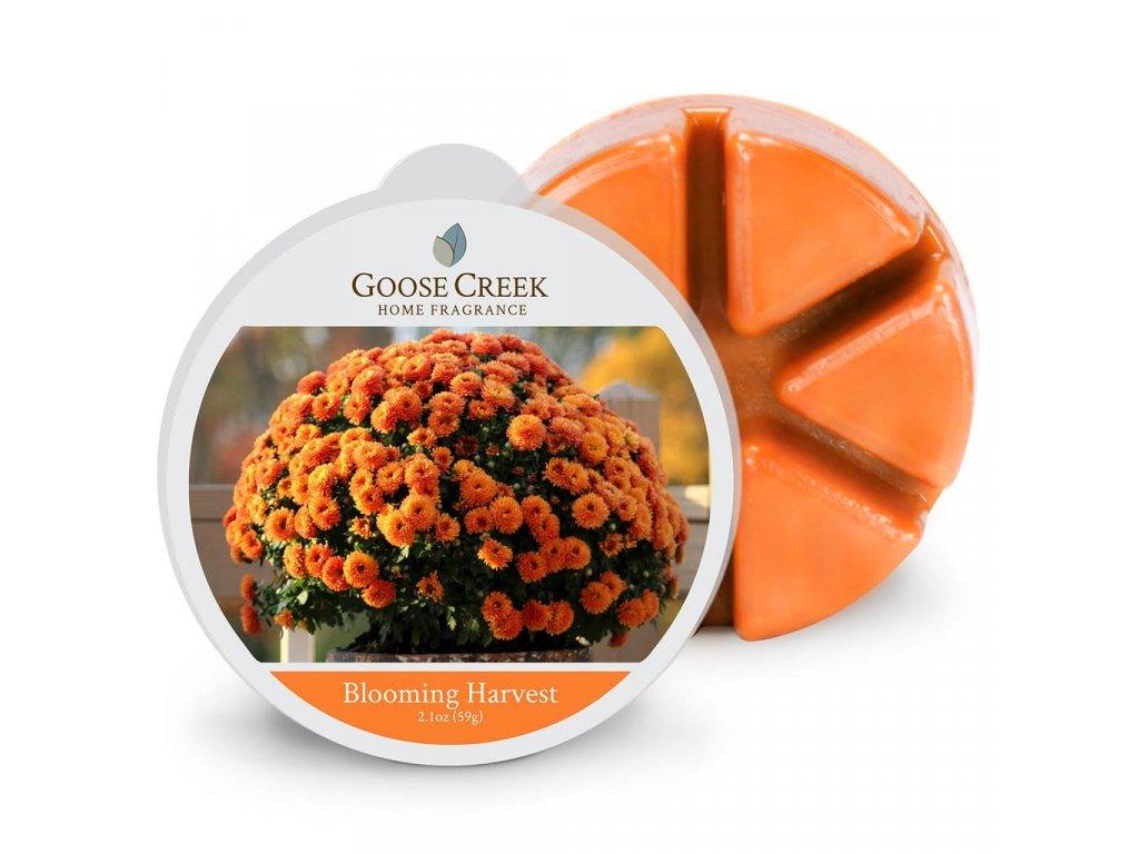 Goose Creek Candle Vonný Vosk Kvetoucí sklizeň - Blooming Harvest, 59 g
