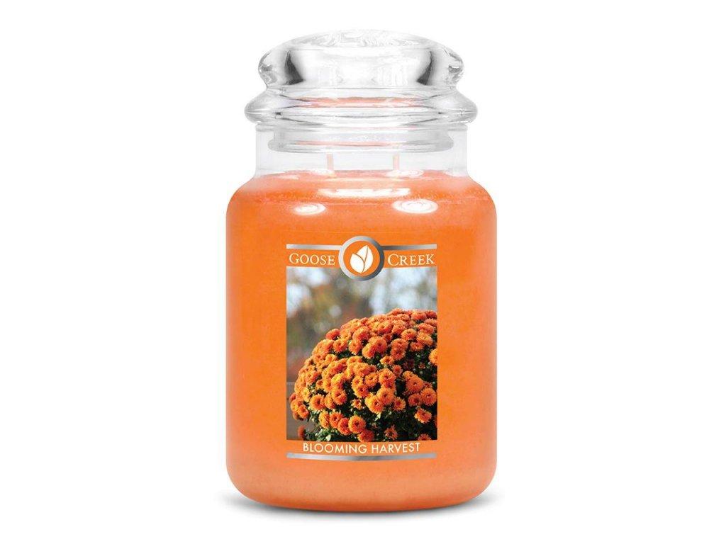 Goose Creek Candle svíčka Blooming Harvest, 680 g
