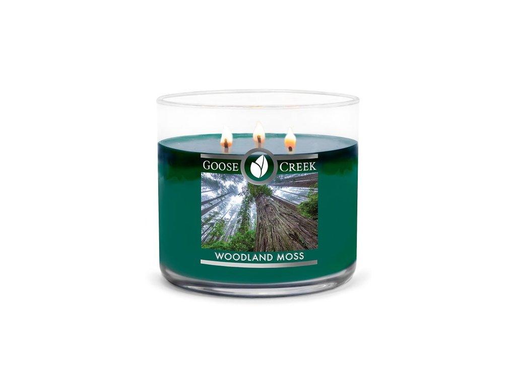 Goose Creek Candle svíčka Woodland Moss, 411 g