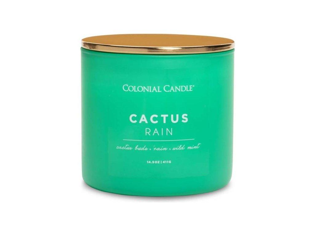 pol pm Colonial Candle Pop Of Color sojowa swieca zapachowa w szkle 3 knoty 14 5 oz 411 g Cactus Rain 8186 2