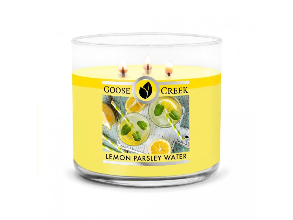 Lemon Parsley Water Large 3 Wick Candle 1024x1024