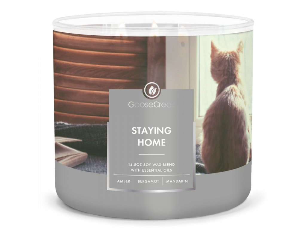 Staying Home Large 3 Wick Candle 1024x1024