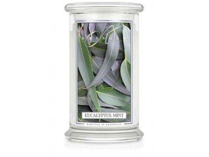 Kringle Candle svíčka Eucalyptus Mint, 623 g