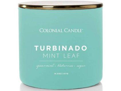 pol pm Colonial Candle Pop Of Color sojowa swieca zapachowa w szkle 3 knoty 14 5 oz 411 g Turbinado Mint Leaf 8278 1
