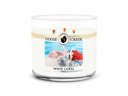 White Coral Large 3 Wick Candle 1024x1024