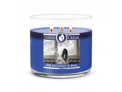 The Snuggle Is Real 3 Wick Candle 1024x1024