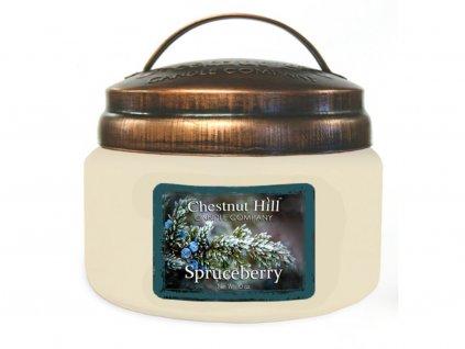61263 10 oz spruceberry