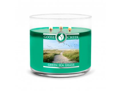 Green Sea Grass 3 wick Candle 1024x1024
