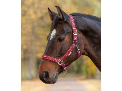 little horses ružová