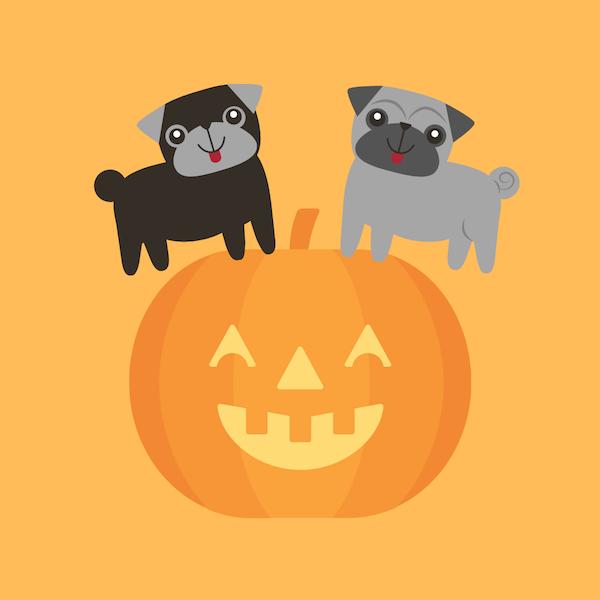 Halloween na JB Shopu