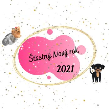 Nový rok 2021 ✨