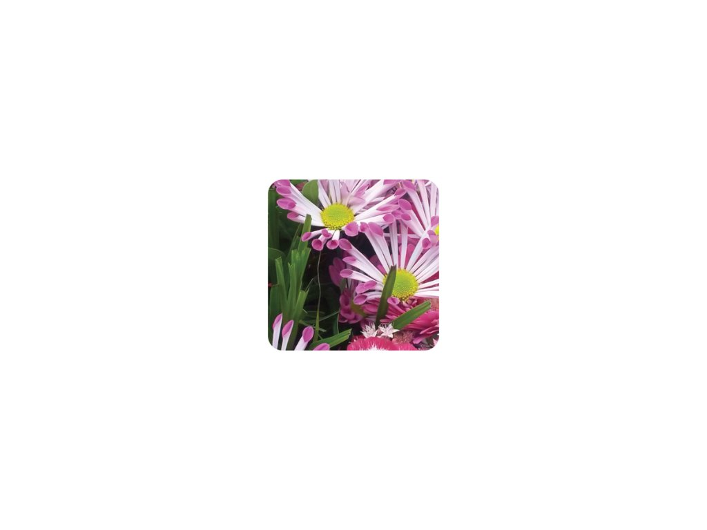 jcandles difuzer cutflowers pure