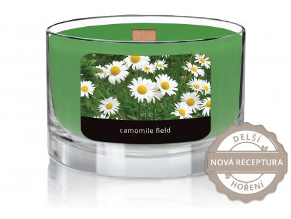 JCandles color intensive wood wick 0013 CAMOMILE FIELD1