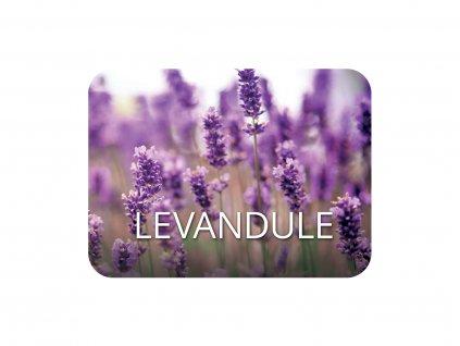 jcandles vune LEVANDULE