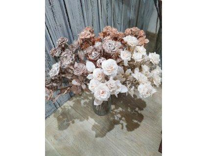 mini růže | cappucino