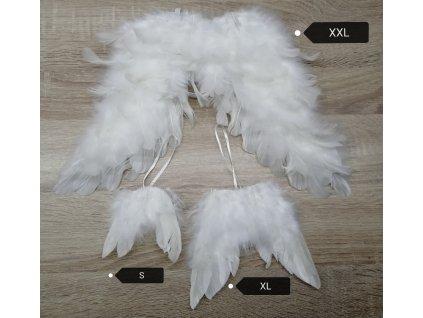 andělská křídla L 13 cm | bílá