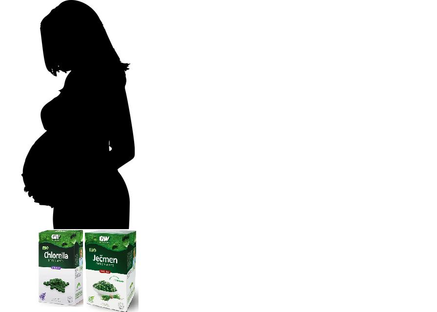 Ječmen a chlorella v těhotenství a v době kojení