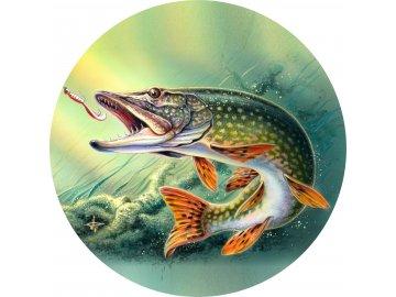 Ryby - Jedlý obrázek - RB1