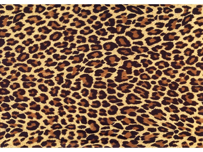 leopard295