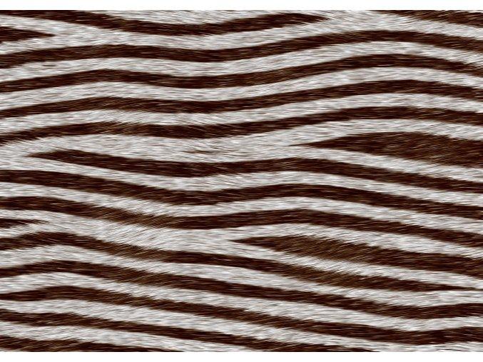 zebra2 297