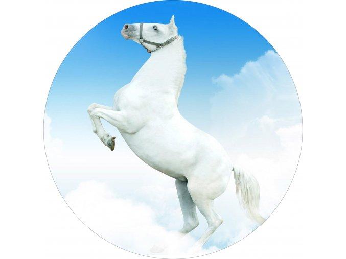 Koně - Jedlý obrázek - OK3