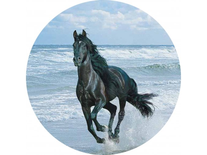 Koně - Jedlý obrázek - OK9