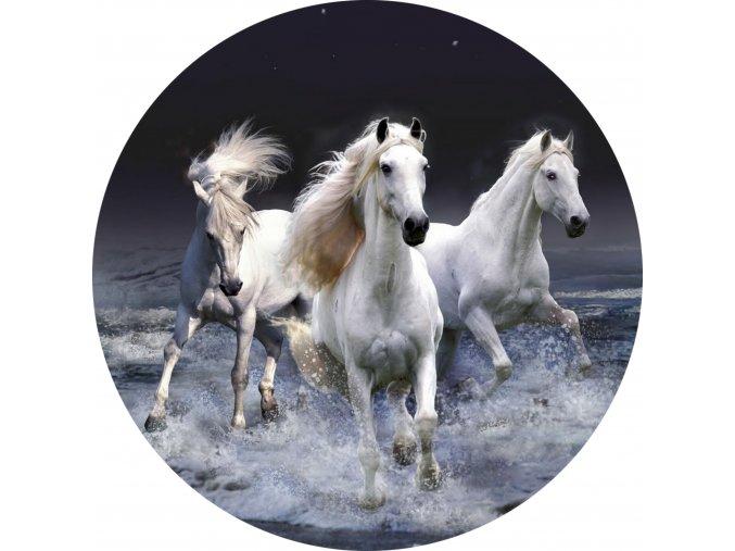 Koně - Jedlý obrázek - OK13