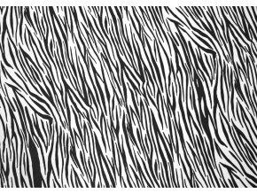 zebra 289