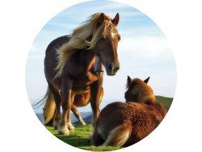 Koně - Jedlý obrázek - OK5