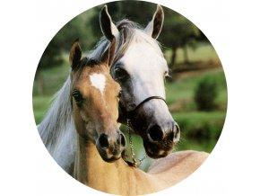 Koně - Jedlý obrázek - OK6