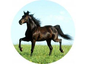Koně - Jedlý obrázek - OK10