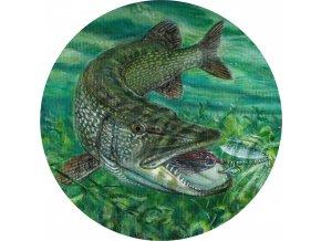 Ryby - Jedlý obrázek - RB2