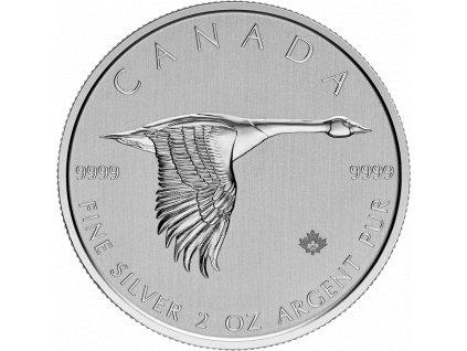 2oz Silbermuenze Kanada Kanadagans 2020 vs