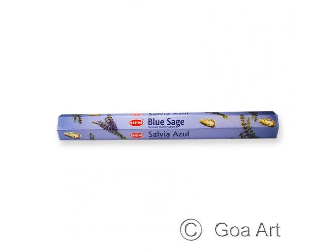 502284 Blue sage