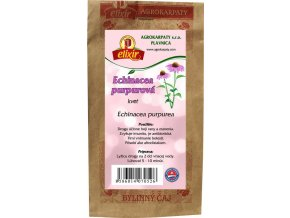 echinacea purpurova kvet