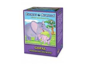 12207 Gopal